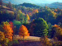 Fall foliage in Virginia's Western Highlands