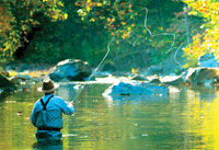 Fishing in Alleghany County