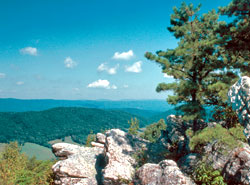 Flag Rock Overlook in Warm Springs, Virginia